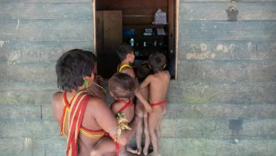 Photo of We are facing extermination': Brazil losing a generation of indigenous leaders to Covid-19